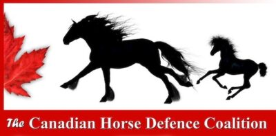 The Canadian Horse Defence Coalition